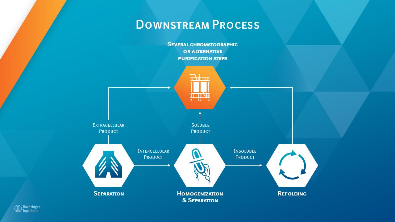 Biopharmaceutical downstream process