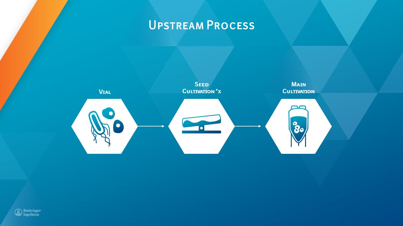 Biopharmaceutical upstream process