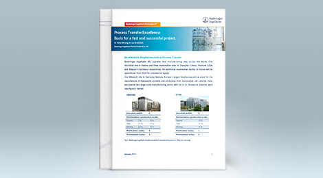 Learn more about our understanding of a successful project transfer