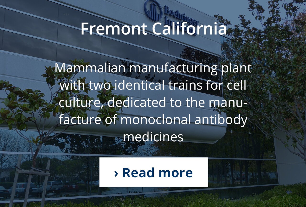 Mammalian cell culture production in Fremont, CA USA.