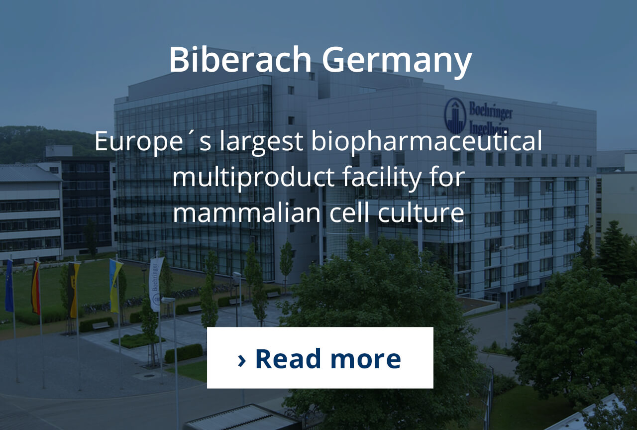 Mammalian cell culture production in Biberach, Germany.