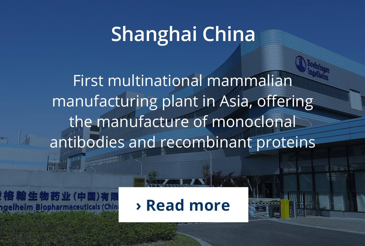 Mammalian cell culture production in Shanghai, China.
